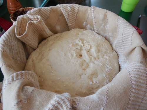 My dough ball after a 1 hour rise. Ready for the oven!